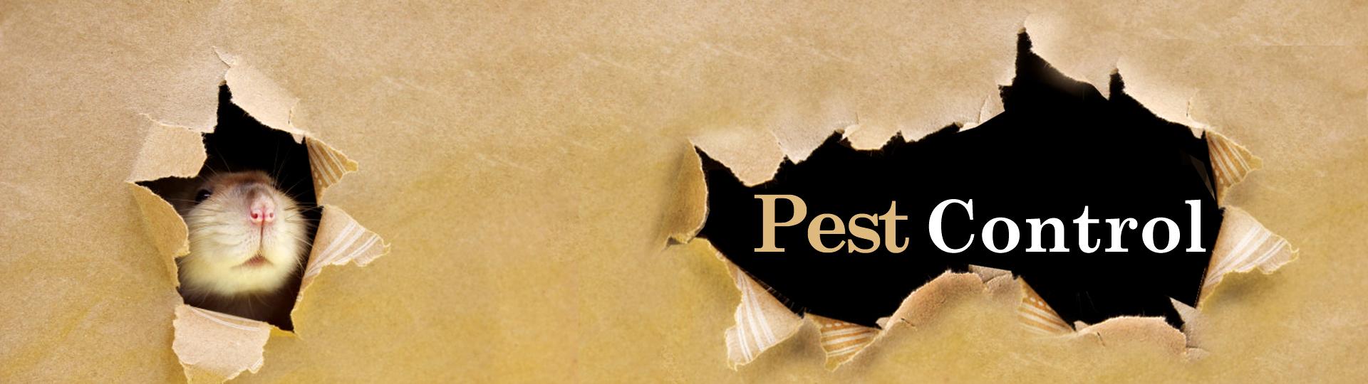 Pest Control product range
