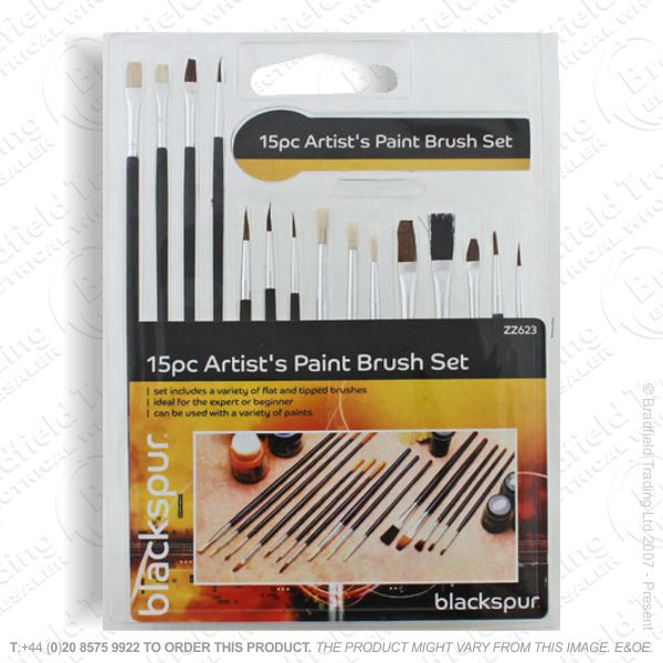 C25) Artist Paint Brush Set ECO
