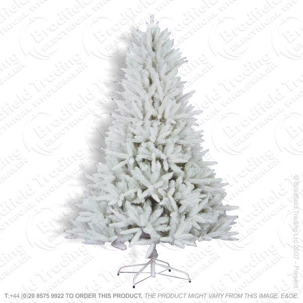 D11) 5ft Aspen Mixed Tree White